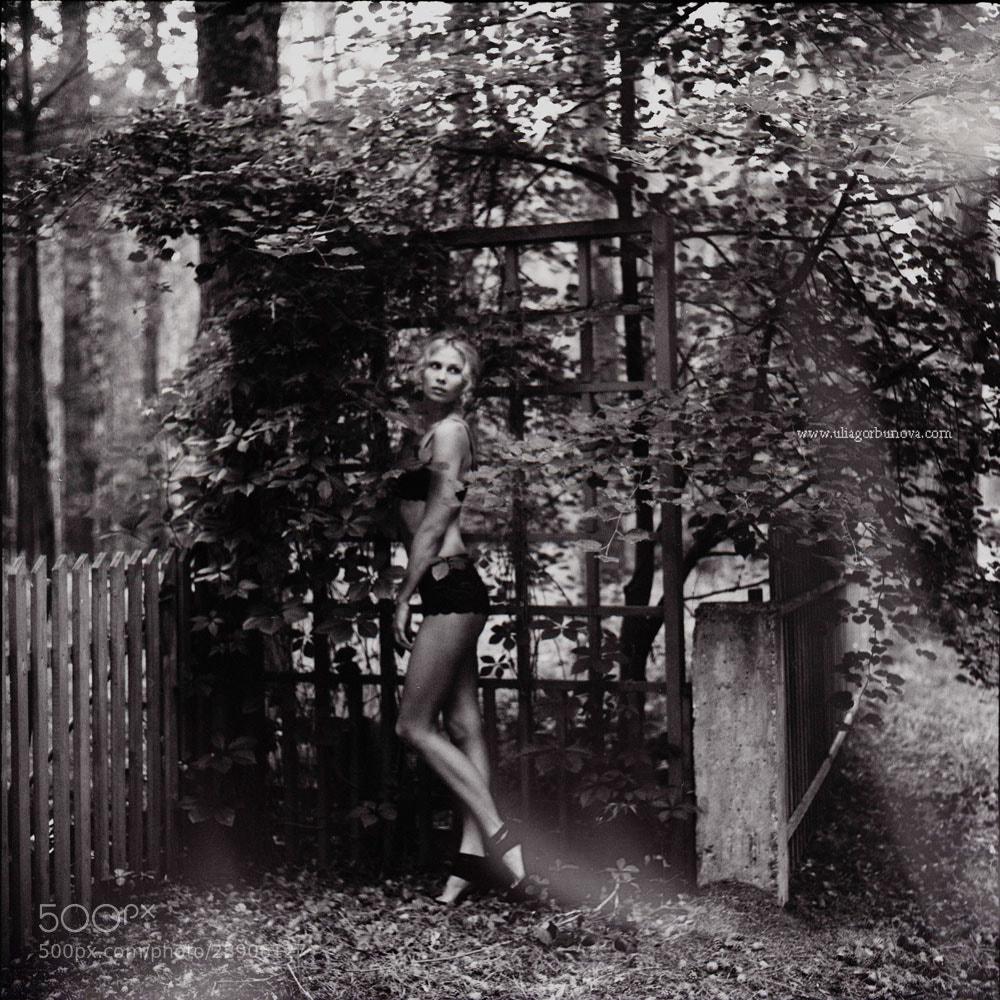 Photograph Untitled by Ulia Gorbunova on 500px