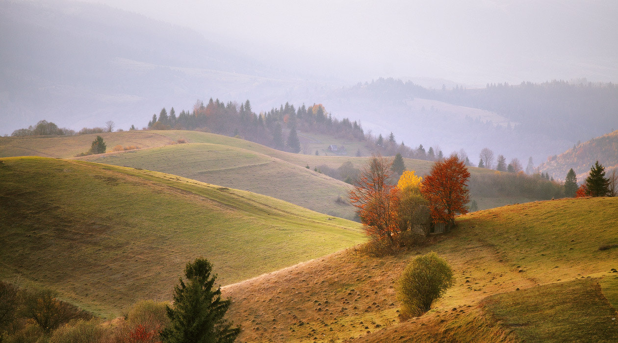 Photograph Carpathian Autumn by Maxim Weise on 500px
