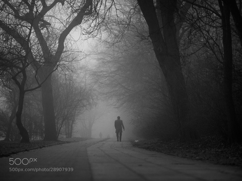 Photograph The Fog by Adde Adesokan on 500px