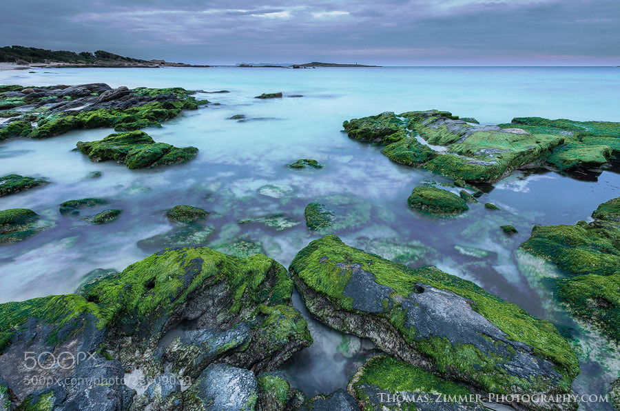 Photograph Green Coast by Thomas Zimmer on 500px