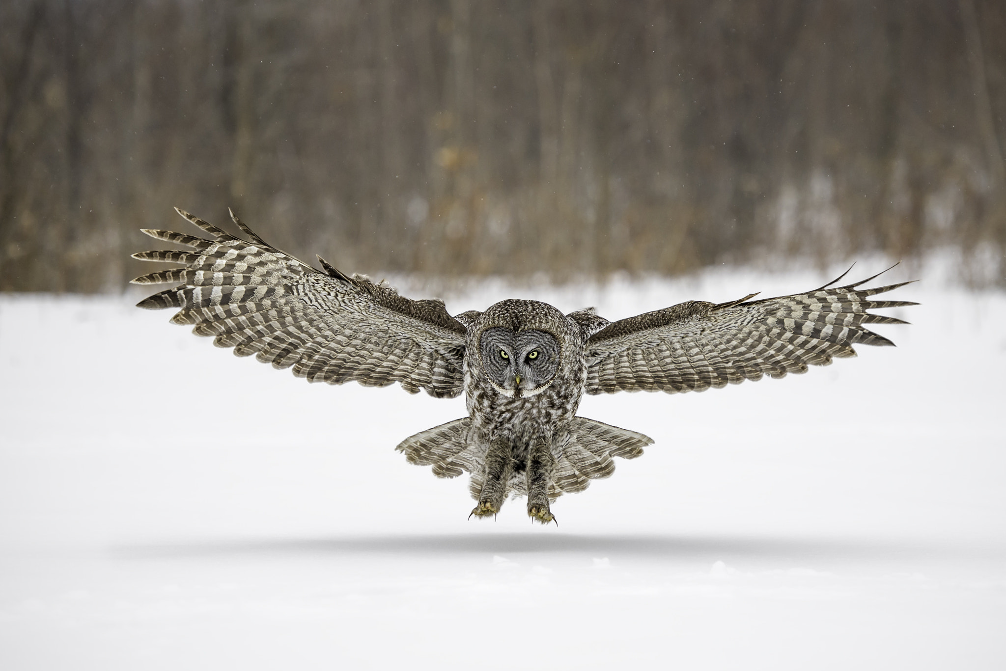 Photograph Approach to Landing by Daniel Parent on 500px