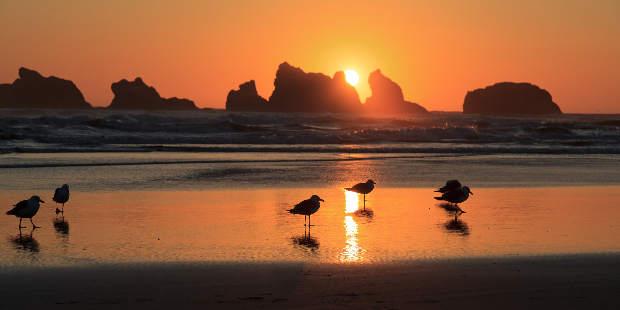 Photograph Sunset at Face Rock, Oregon by Oliver Schulte on 500px