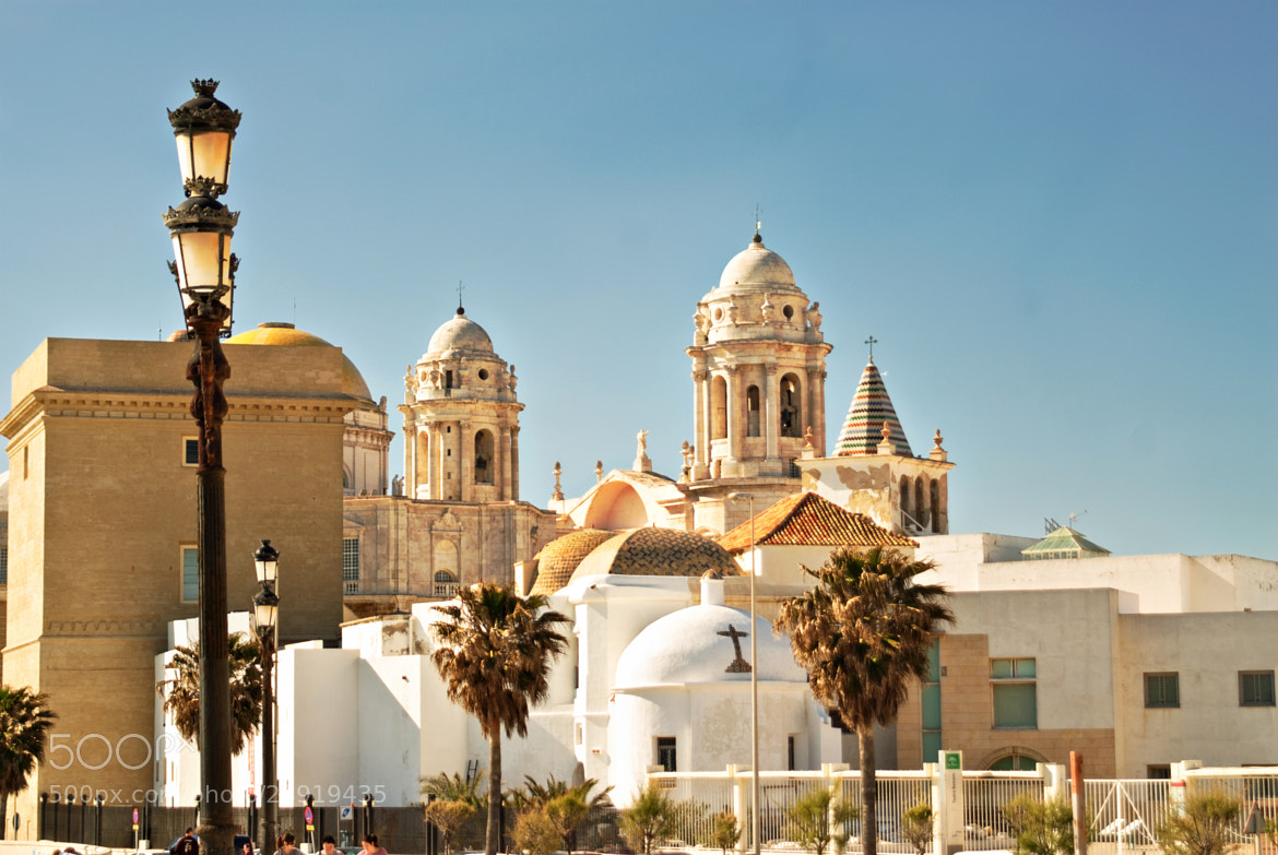 Photograph Cadiz: Cathedral de Santa Cruz by Sven Bannuscher on 500px