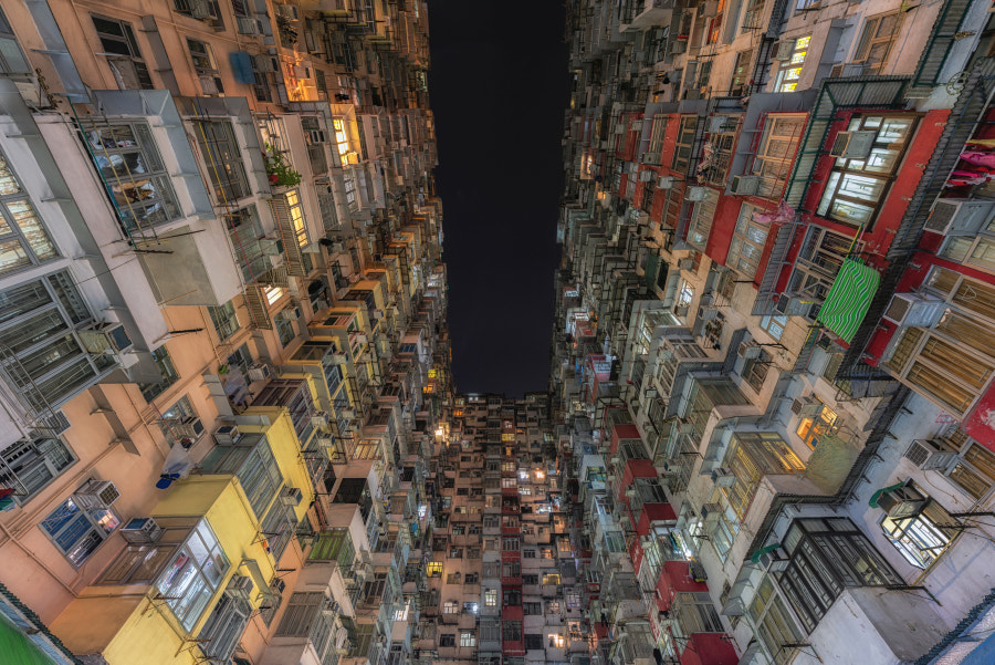 Densely Populated by Dietrich Herlan on 500px.com