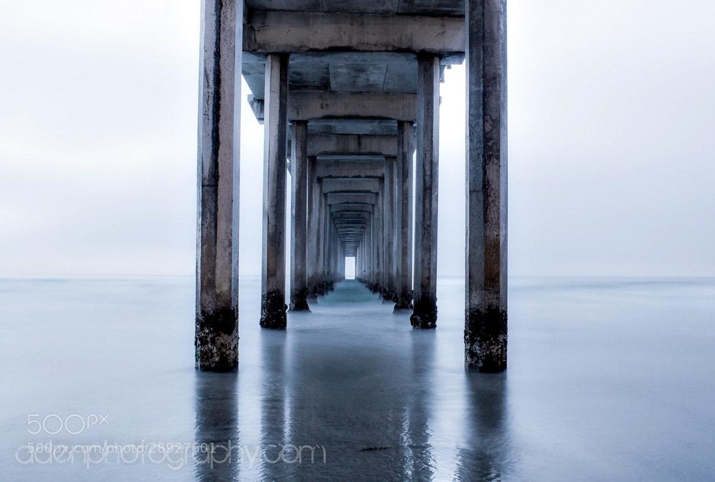 Photograph Untitled by Matt Aden on 500px