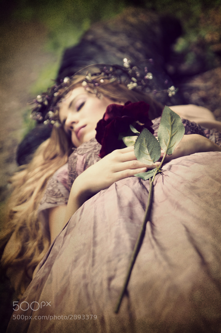 Photograph Sleeping Beauty Project #5 by Diana Cornielle on 500px
