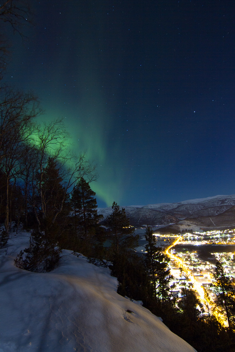 Photograph Northern lights - Rognan by Chris-André Paulsen on 500px
