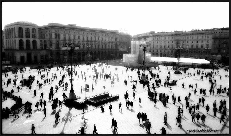 Photograph city ants by Flavio Obradovic on 500px