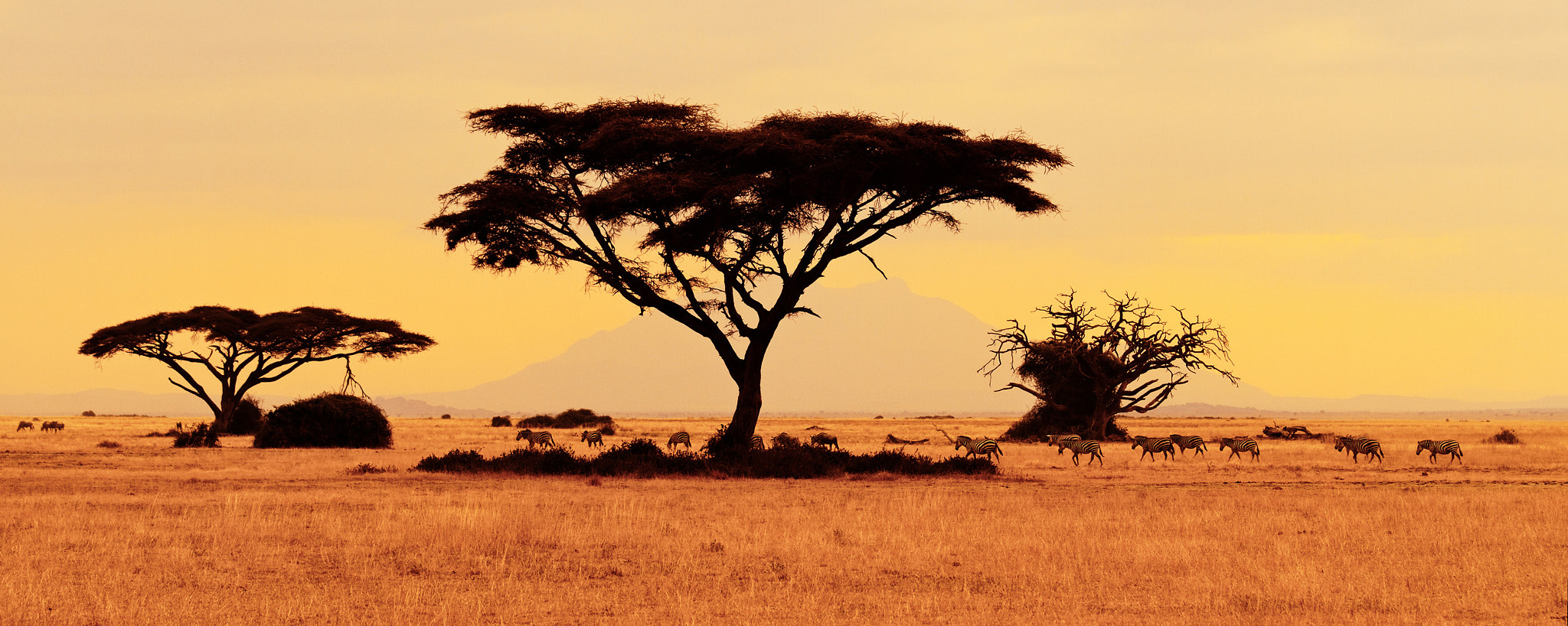 Photograph Color of Africa by Frédéric Paolino on 500px