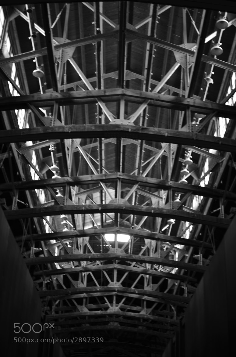 Photograph Roof architecture by Shih Leslie on 500px