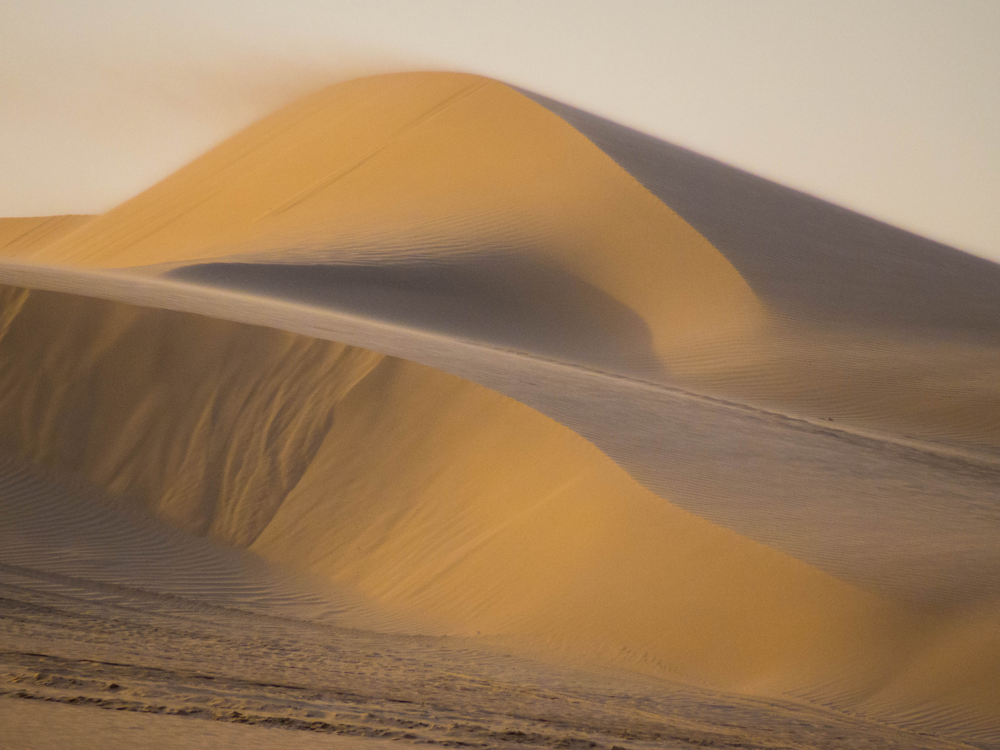 Photograph Sand dune  by Saeed Nassri on 500px