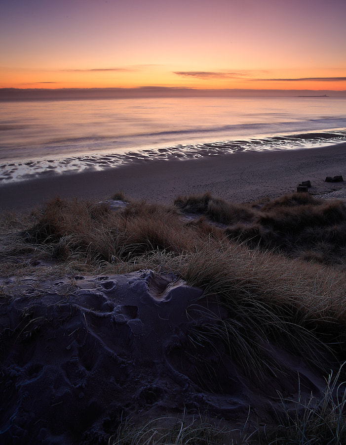Warkworth Dunes Sunrise