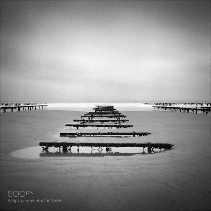 Photograph La solitude de la moule #03 by grains de sel on 500px