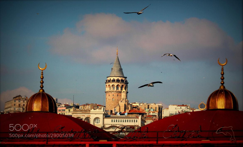 Photograph Galata tower by Ramazan  Fener on 500px