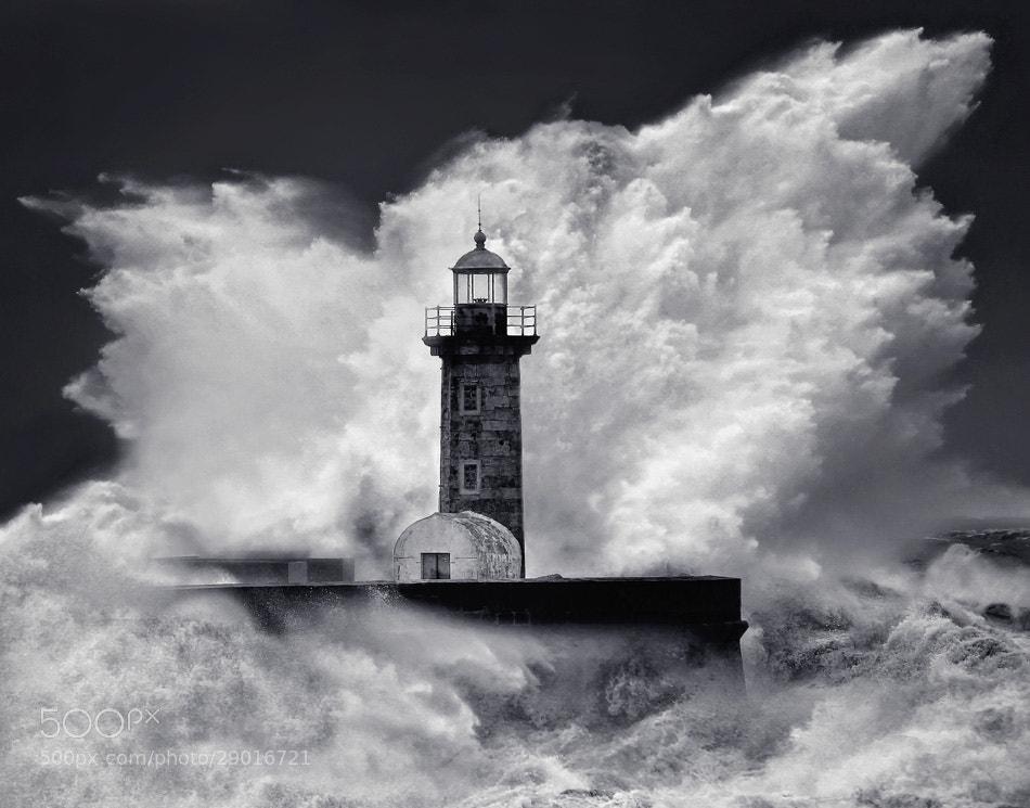 Photograph rage bw by Veselin Malinov on 500px