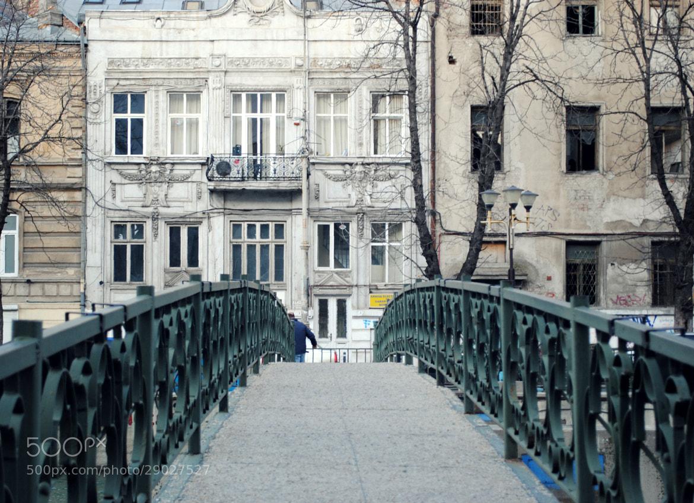 Photograph The way by Ioana San on 500px