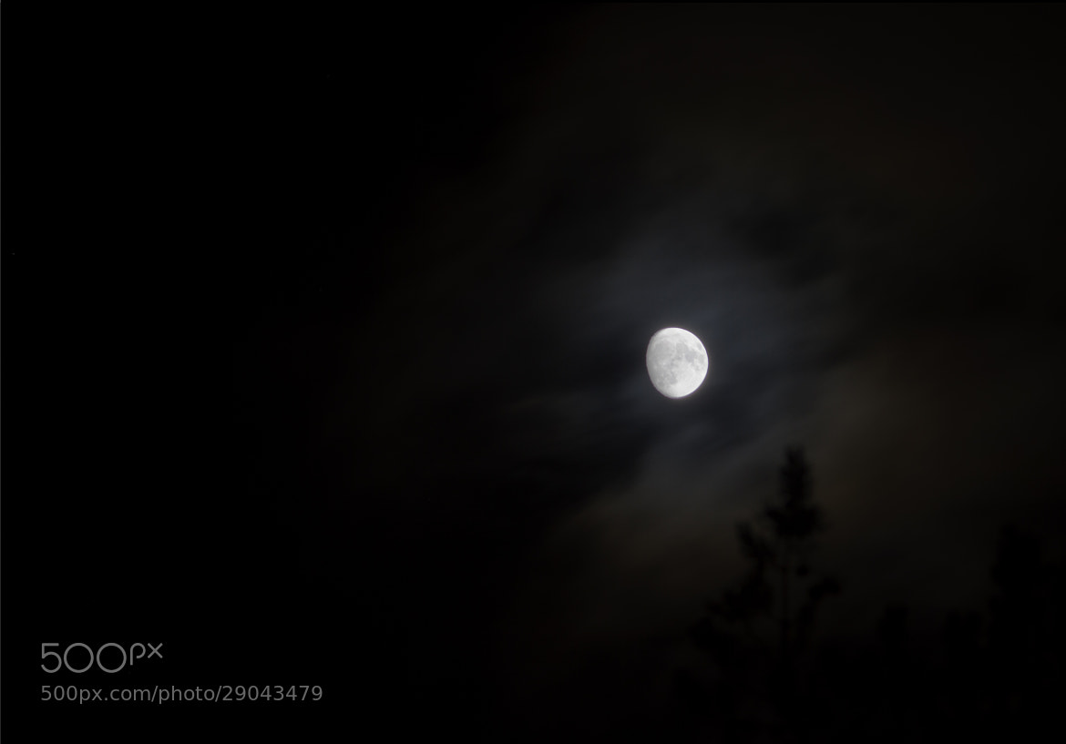 Photograph Moonlight by Chris-André Paulsen on 500px