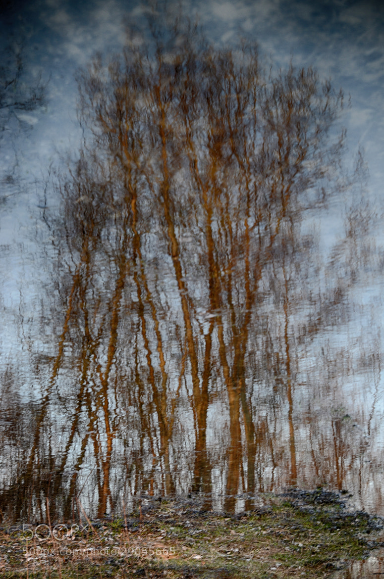 Photograph Reflections... by Ionescu Dragos on 500px