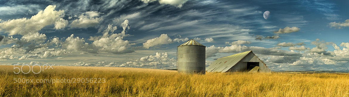 Photograph Shed Some Light by Timothy Poulton on 500px