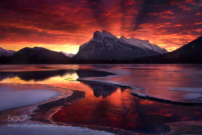Photograph The Beginning by Marc  Adamus on 500px