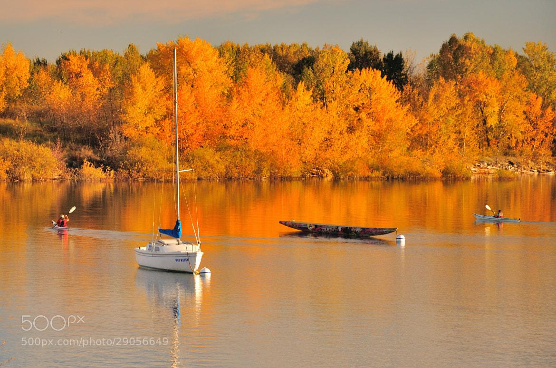 Photograph Fall - Glemore Reservoir by Shuchun Du on 500px