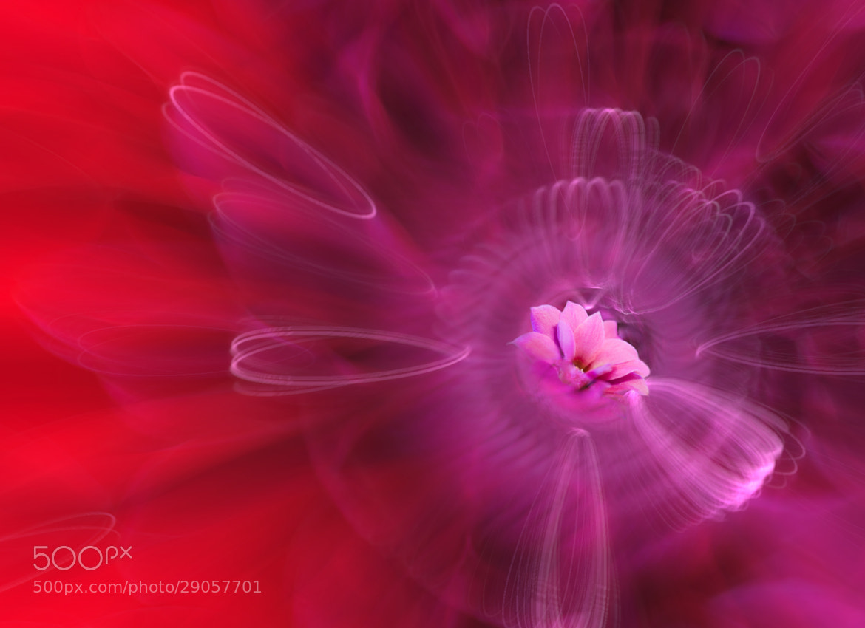 Photograph Eternal ♥ Love by Josep Sumalla on 500px