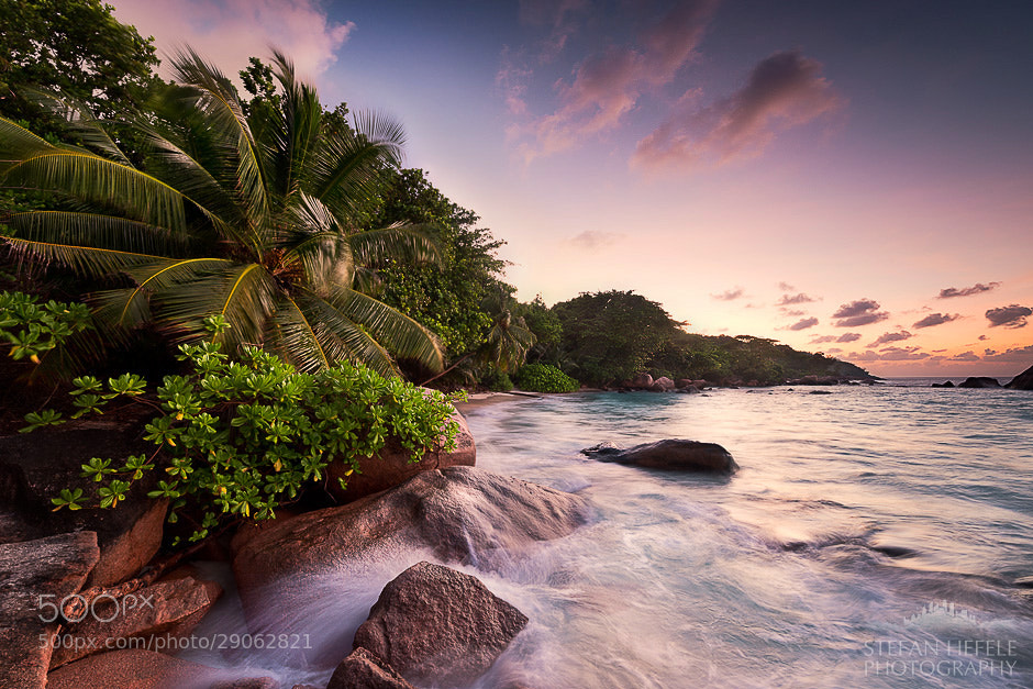 Photograph Tropical Inferno by Stefan Hefele on 500px