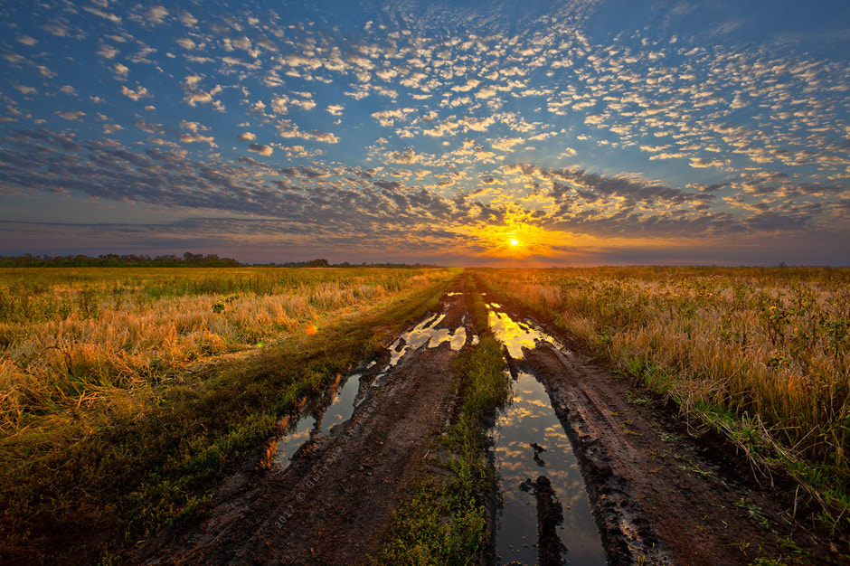 Photograph Road to the sun by Alexey Vyguzov on 500px