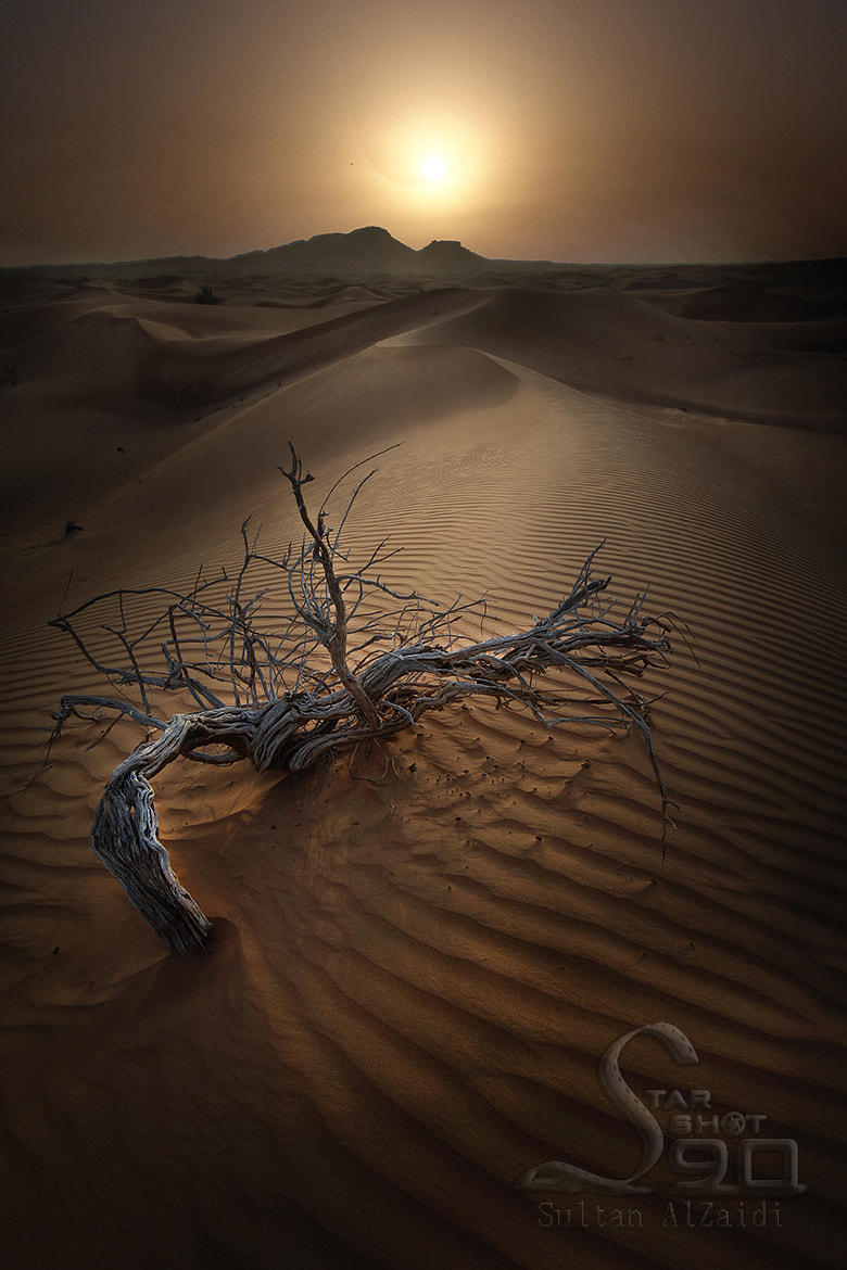 Photograph dryness desert by Sultan ســلطان  Al-zaidi الزيــدي on 500px