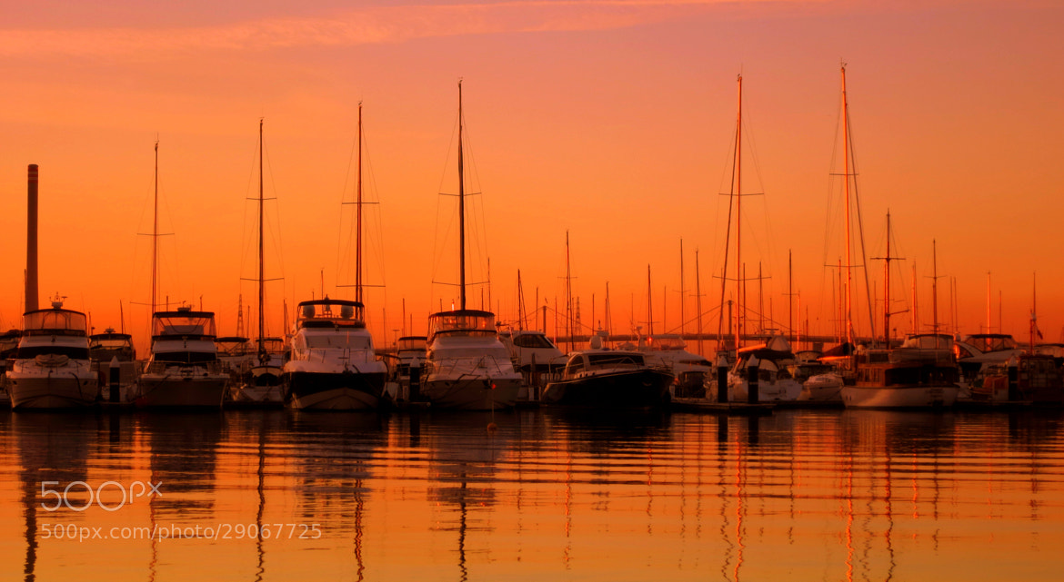Photograph the boats by alf M on 500px