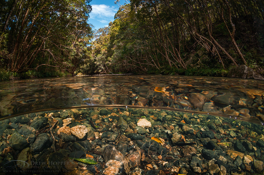 Photograph Never Never Creek by Drew Hopper on 500px