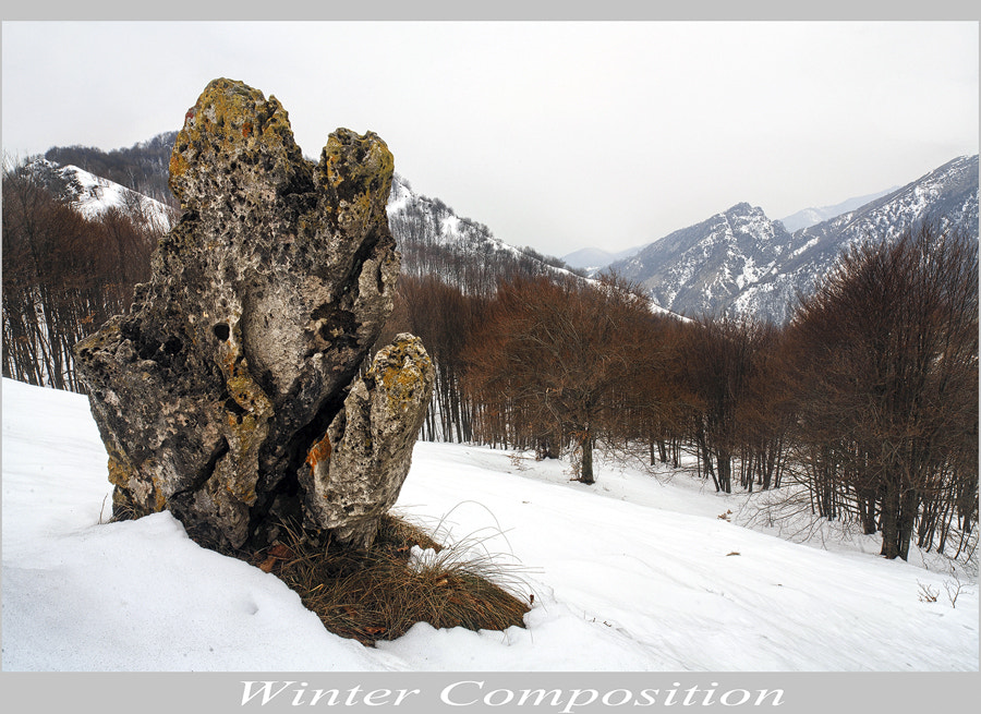 Photograph Winter Composition by FeFoPhotography  on 500px