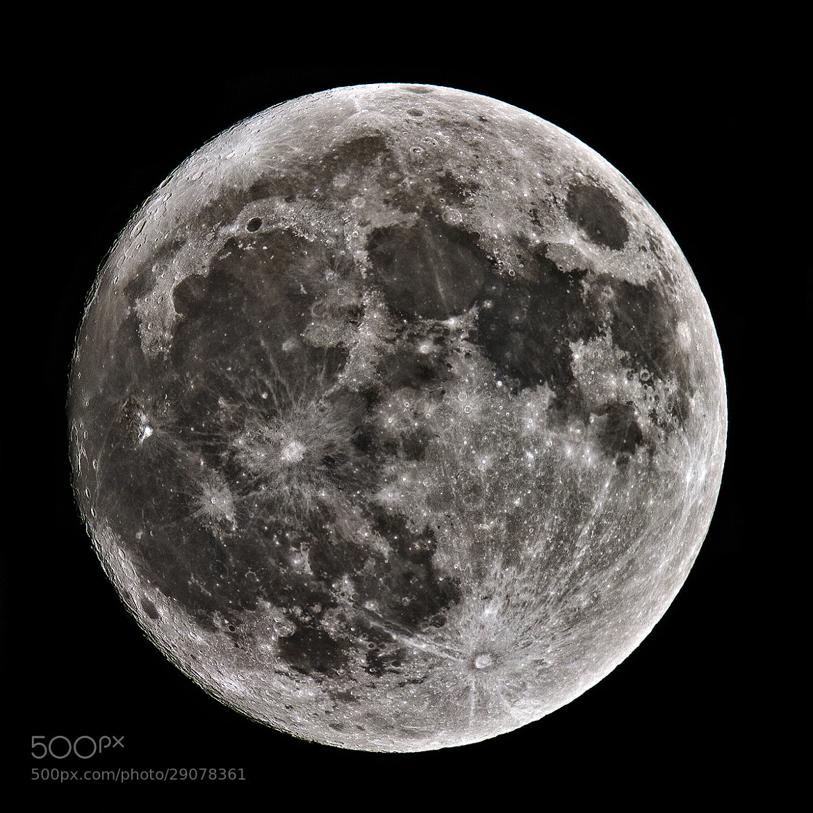 Photograph Perigee Moon by Paolo Guidetti on 500px