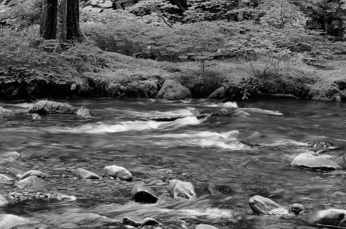 Photograph Sol Duc River by Michael Wewer on 500px