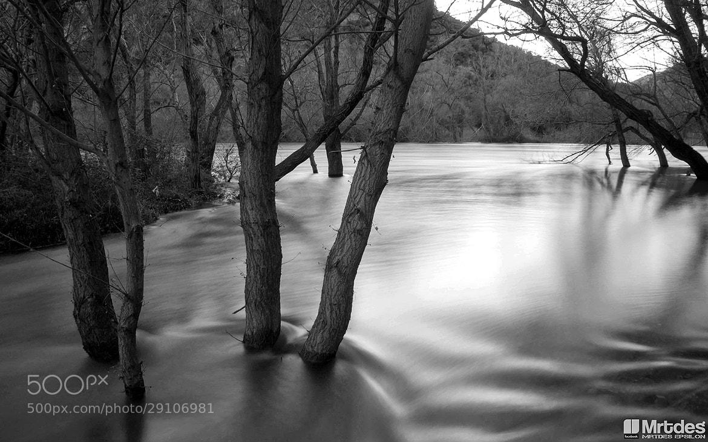 Photograph Mercury waters. by Everypeedees Mu on 500px