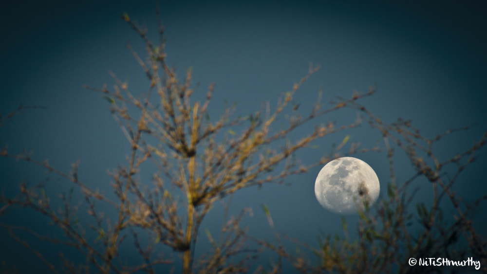 Photograph Moonrise by Nitish Murthy on 500px
