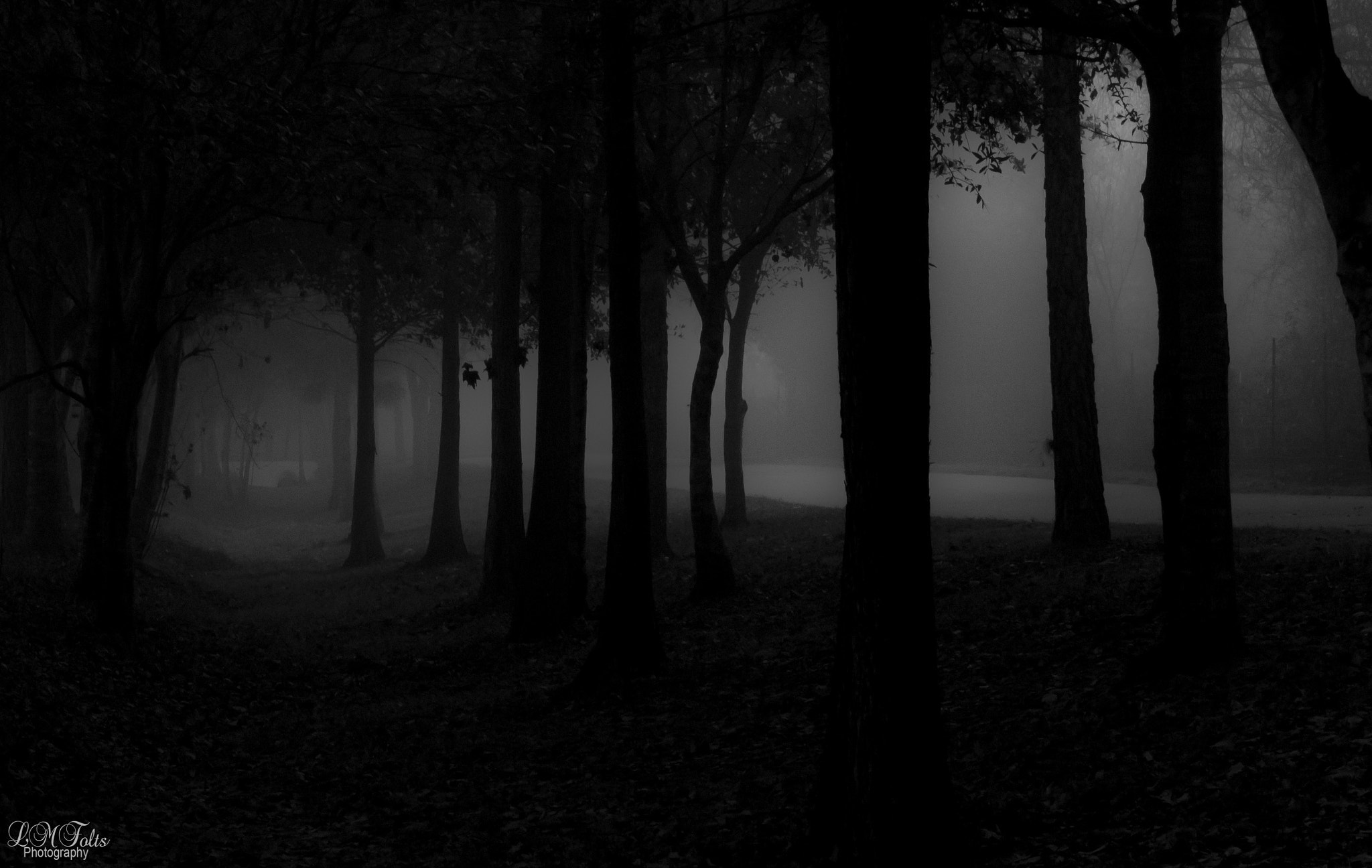 Photograph In the Dark by Lynn Marie on 500px