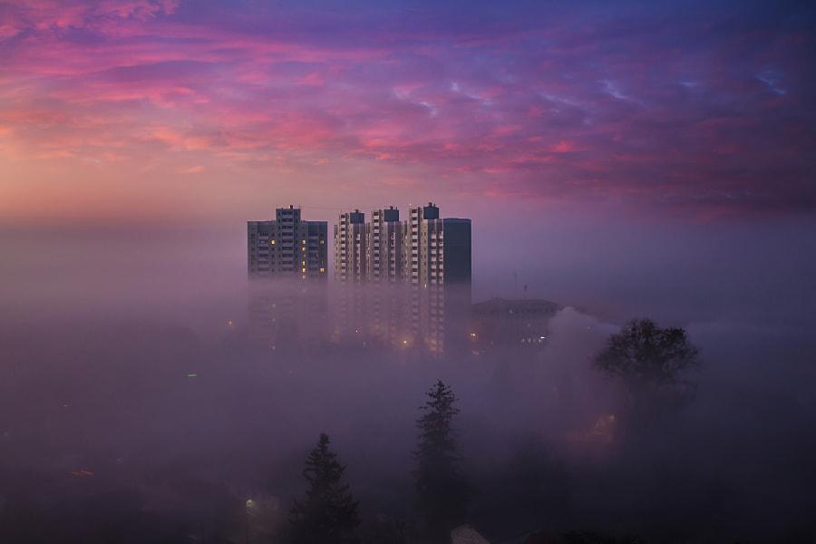 Foggy city by Андрей Петрусь on 500px.com