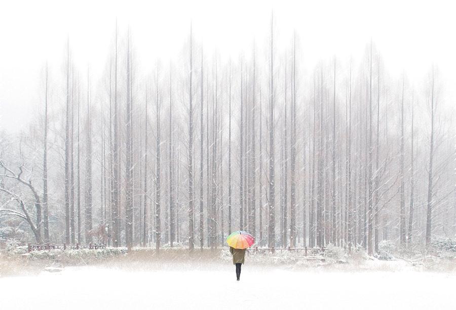 下雪了 by 爱撒谎的猫 on 500px.com