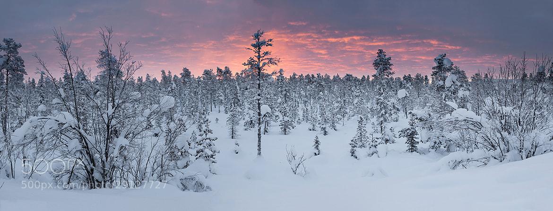Photograph The Last Sunrise by Daniel Hannabuss on 500px