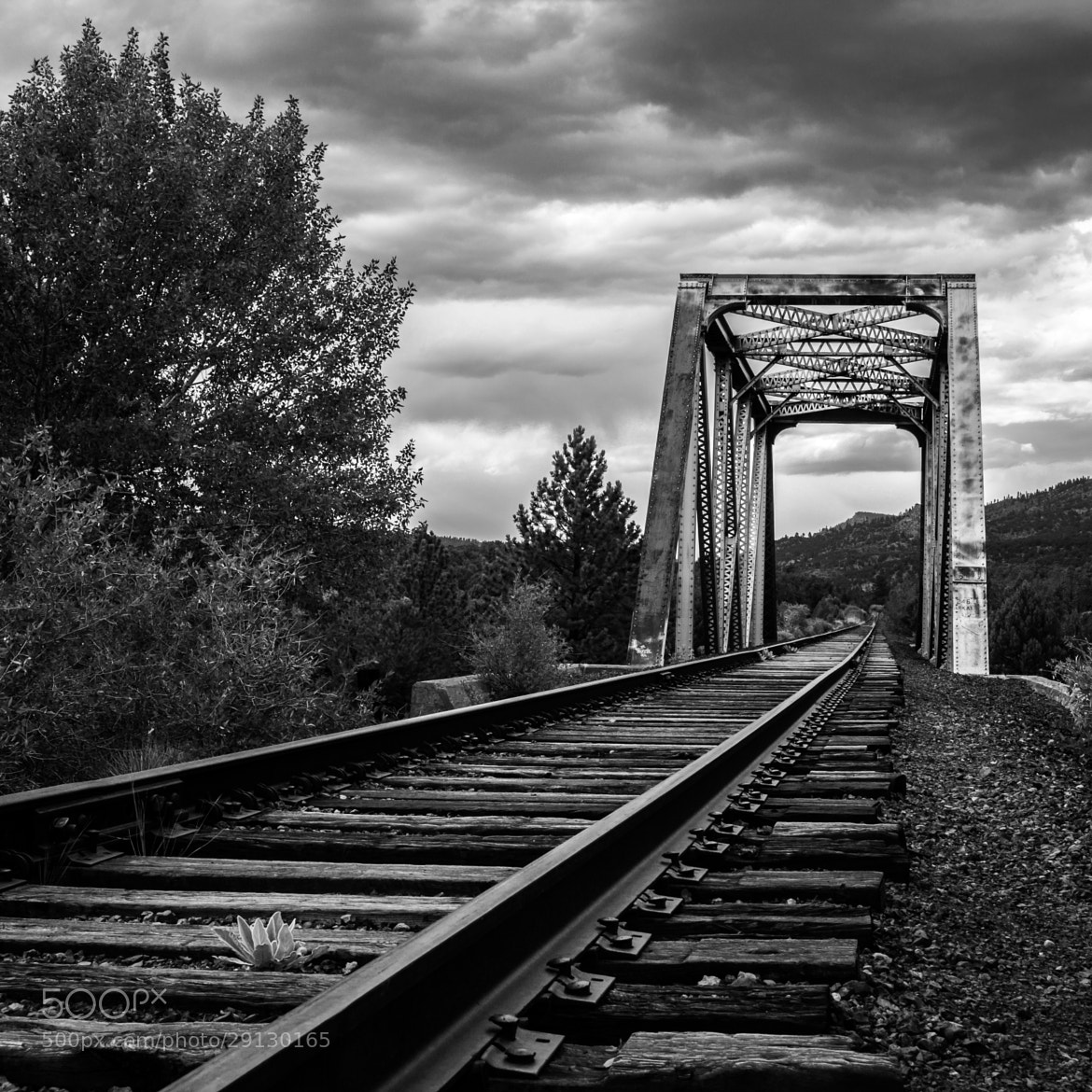 Photograph Railroad Bridge by Rick Loseke on 500px