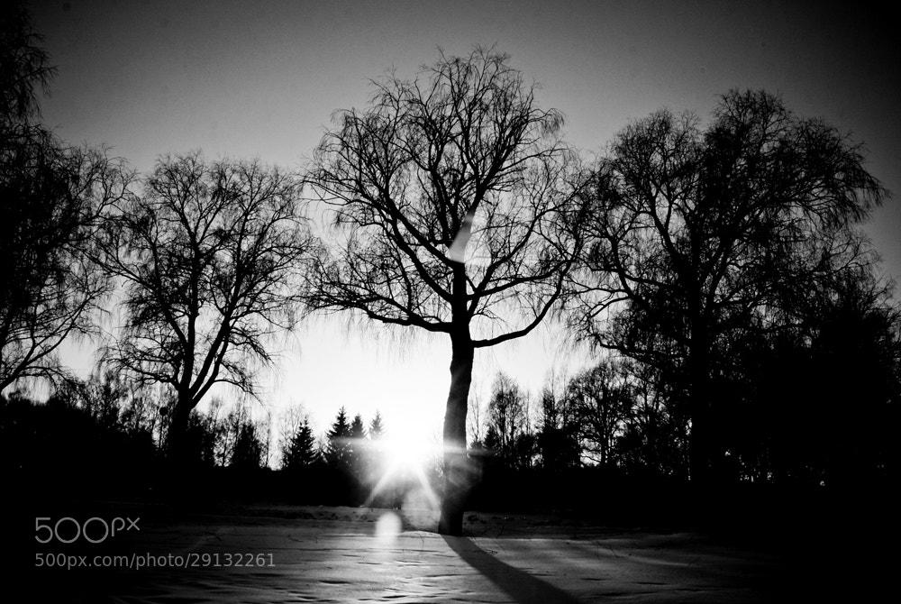Photograph black hole sun // won't you come by Katja Pikova on 500px