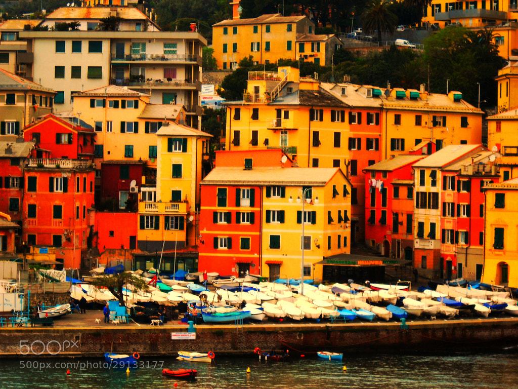 Photograph Corso Italia by Eva Slusar on 500px