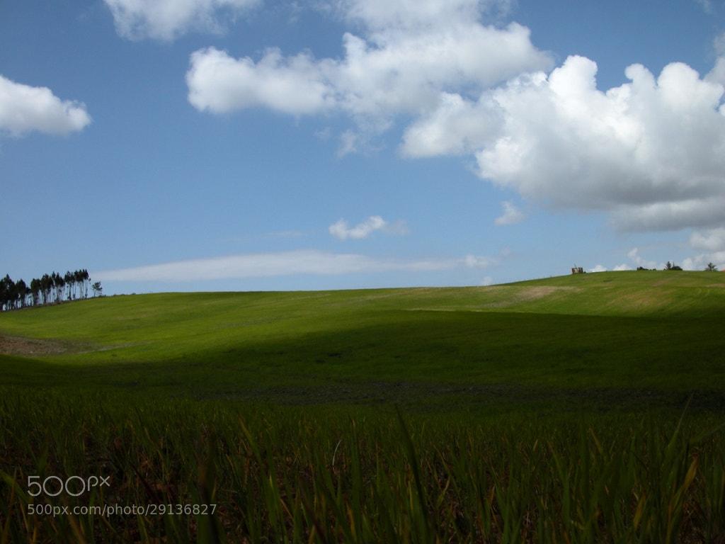 Photograph Countryside by José Eusébio on 500px