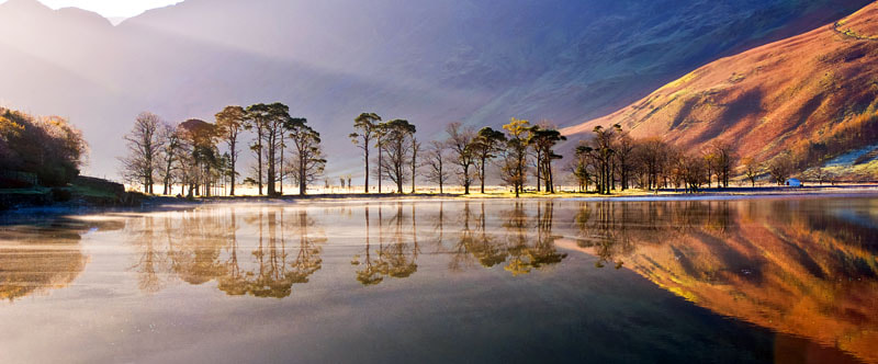 Photograph Buttermere Pines by Lee Metcalfe on 500px