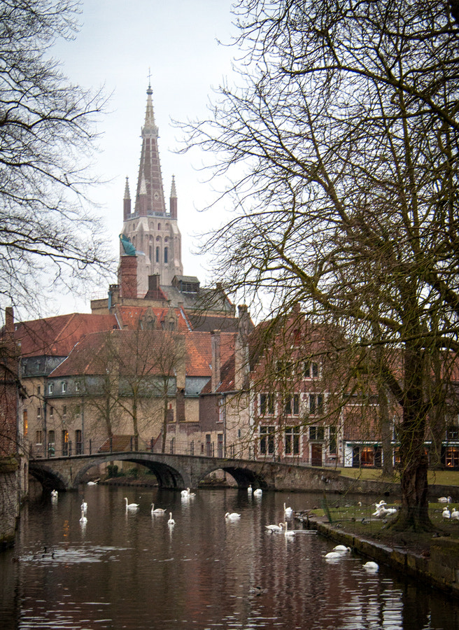 Photograph Brugge by martin gatti on 500px