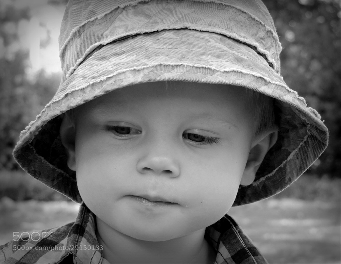 Photograph Max by Linda Brown on 500px