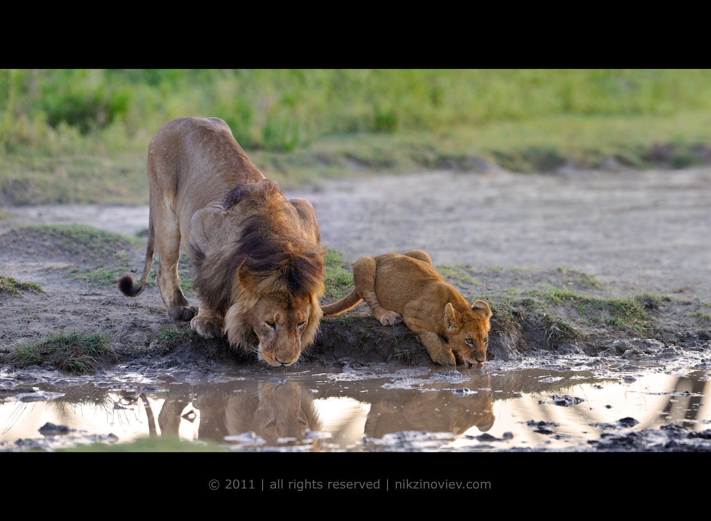 Photograph Father and son by Nikolai Zinoviev on 500px