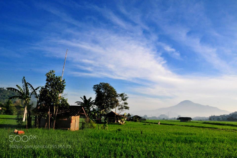 Photograph Kampoeng Toga by dede_kelana on 500px