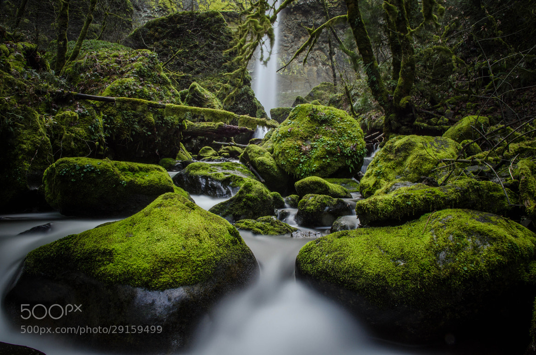 Photograph Elowah Falls by Thomas Duffy on 500px